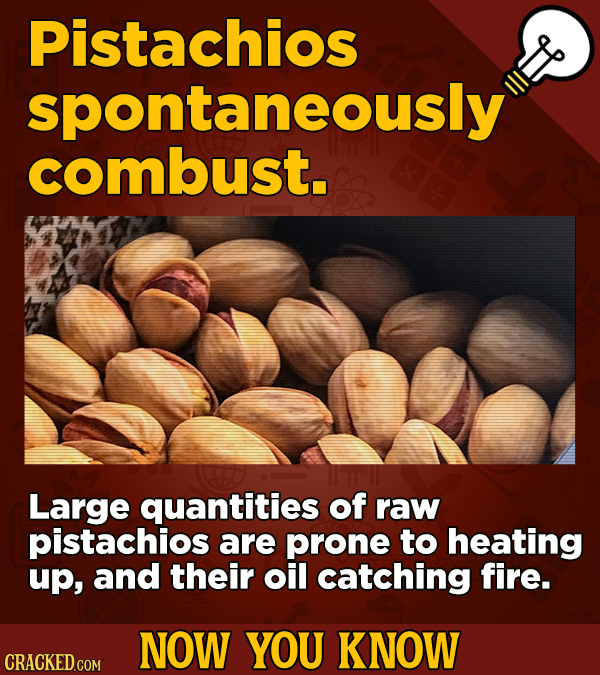 Pistachios spontaneously combust. Large quantities of raw pistachios are prone to heating up, and their oil catching fire. NOW YOU KNOW CRACKED COM