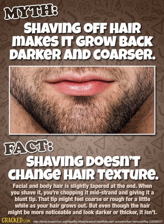 MYTH8 SHAVING OFF HAIR MAkes IT GROW BACK DARKER And COARSER. FACT8 SHAVING DoeSN'T CHANGE HAIR TEXTURE. Facial and body hair is slightly tapered at t