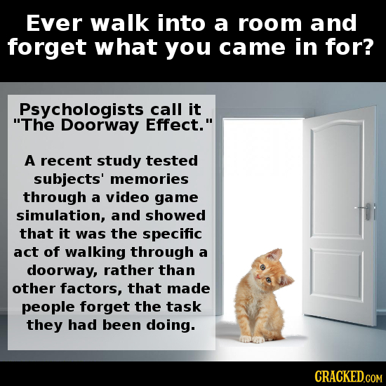 22 Scientific Explanations That Can Make Life Less Annoying