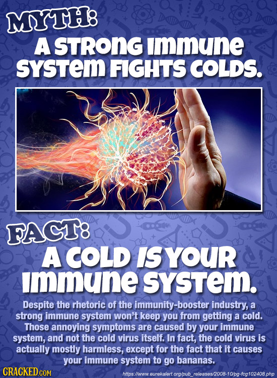 MYTHB A STRONG immune sYSTem FIGHTS COLDS. FAGT8 A COLD IS YOUR immune system. Despite the rhetoric of the immunity-booster industry, a strong immune