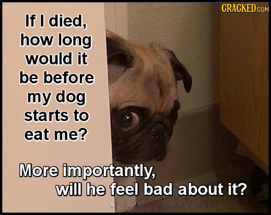CRACKED.GOM If I died, how long would it be before my dog starts to eat me? More importantly, will he feel bad about it?