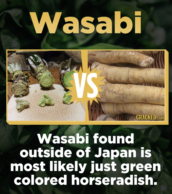 Wasabi VS Wasabi found outside of Japan is most likely just green colored horseradish.
