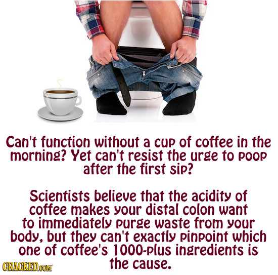 Can't function without a cup of coffee in the morning? Yet can't resist the urge to poop after the first sip? Scientists believe that the acidity of c