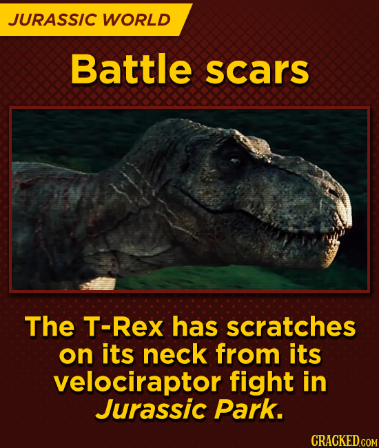 JURASSIC WORLD Battle scars The T-Rex has scratches on its neck from its velociraptor fight in Jurassic Park.