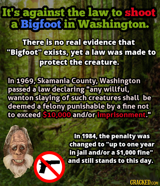 It's against the law to shoot a Bigfoot in Washington. There is no real evidence that Bigfoot exists, yet a law was made to protect the creature. In