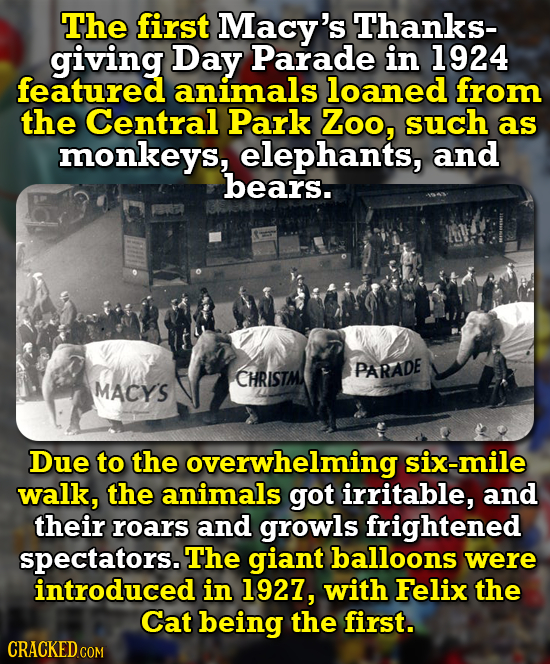 The first Macy's Thanks- giving Day Parade in 1924 featured animals loaned from the Central Park Zoo, such as monkeys, elephants, and bears. PARADE CH