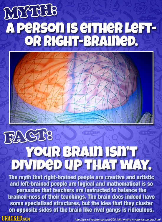 MYTH8 A peRson IS EITHER LEFT- OR RIGHT-BRAINED. FAGT8 YOUR BRAIN ISN'T DIVIDED Up THAT WAY. The myth that right-brained people are creative and artis