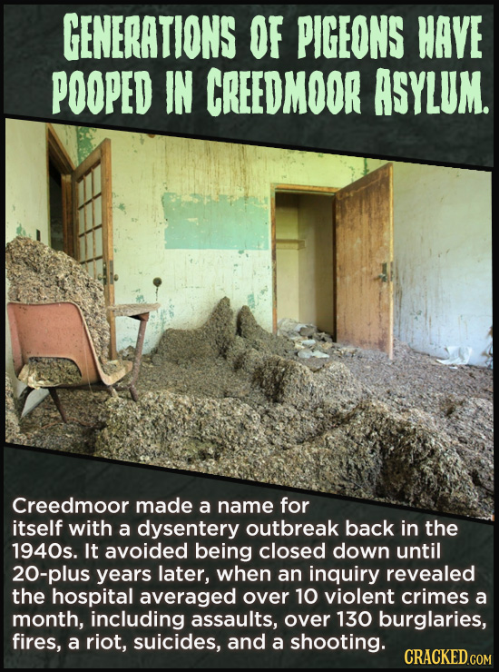 GENERATIONS OF PIGEONS HAVE POOPED IN CREEDMOOR ASYLUM. Creedmoor made a name for itself with a dysentery outbreak back in the 1940s. It avoided being
