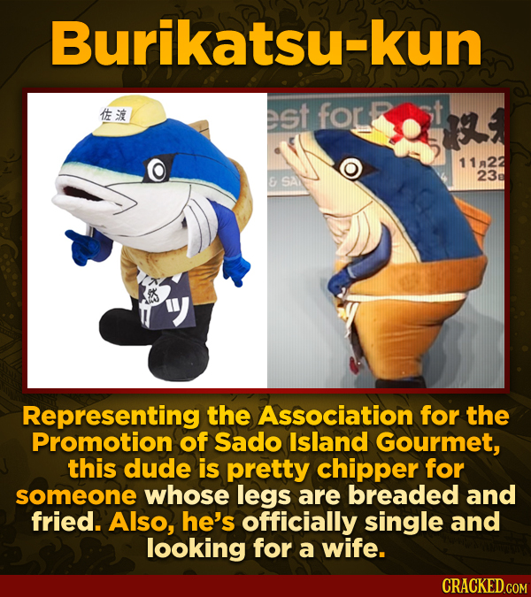 Burikatsu-kun tt est fOr 1122 23 E SAN Representing the Association for the Promotion of Sado Island Gourmet, this dude is pretty chipper for someone
