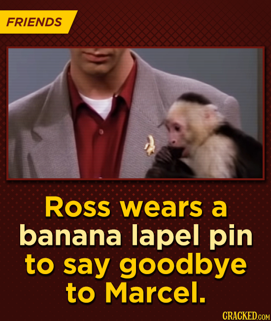 FRIENDS Ross wears a banana lapel pin to say goodbye to Marcel.