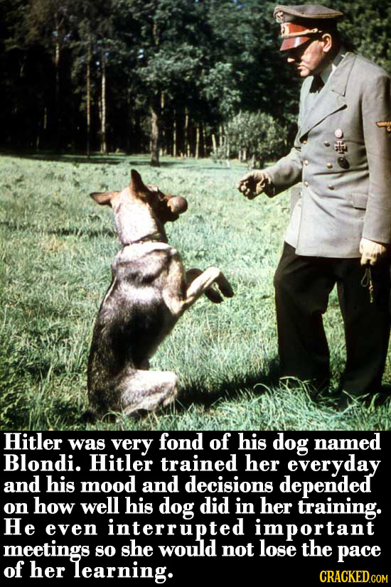Hitler very fond of was his dog named Blondi. Hitler trained her everyday and his mood and decisions depended on how well his dog did in her training.