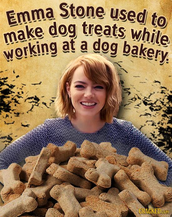 Stone Emma used to dog treats while make at A dog bakery. working CRACKED COM