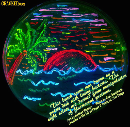 CRACKEDCom on h The drawn was bacteria manipulation scene Living from Steinbach Diego protiens. Paul beach by San with Derived UC This dish Photo Tsie