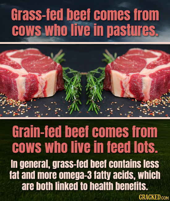 Grass-fed beef comes from COWS who live in pastures. Grain-fed beef comes from COWS who live in feed lots. In general, grass-fed beef contains less fa