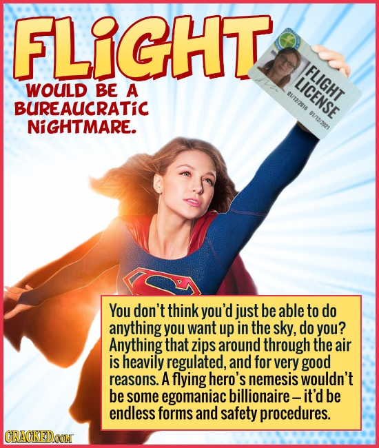 FLIGHT FLIGHT LICENSE WOULD BE A 01/12/2016 01/12/209 BUREAUCRATIC NiGHTMARE. You don't think you'd just be able to do anything you want up in the sky