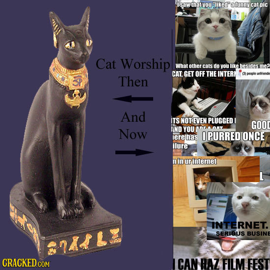 isawthat youtikede alunny cat pic Cat Worship What other cats do you lke besides me? CAT. GET OFF THE INTERE (39) people untriender Then And ITS SNOTE