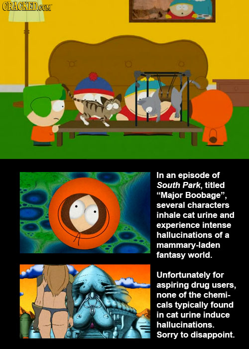 CRACKEDCOMT In an episode of South Park, titled Major Boobage, several characters inhale cat urine and experience intense hallucinations of a mammar