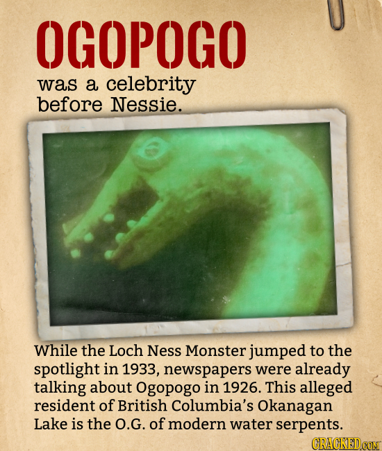 OGOPOGO was a celebrity before Nessie. While the Loch Ness Monster jumped to the spotlight in 1933, newspapers were already talking about Ogopogo in 1