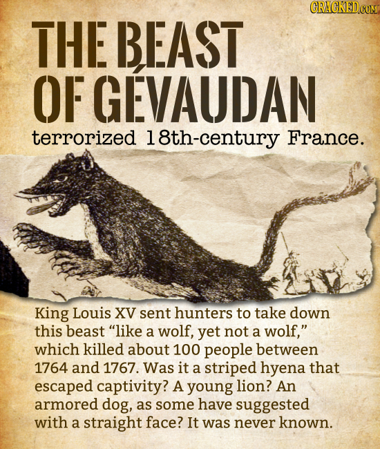 THE BEAST OF GEVAUDAN terrorized 18th-century France. King Louis XV sent hunters to take down this beast like a wolf, yet not a wolf, which killed a