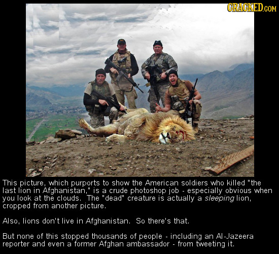 CRAGKED.CO This picture, which purports to show the American soldiers who killed the last lion in Afghanistan, is a crude photoshop job especially o