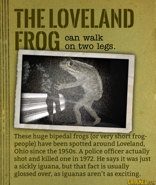 THE LOVELAND FROG can walk on two legs. These huge bipedal frogs (or very short frog- people) have been spotted around Loveland, Ohio since the 1950s.