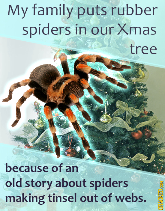 My family puts rubber spiders in our Xmas tree because of an old story about spiders making tinsel out of webs. GRAU