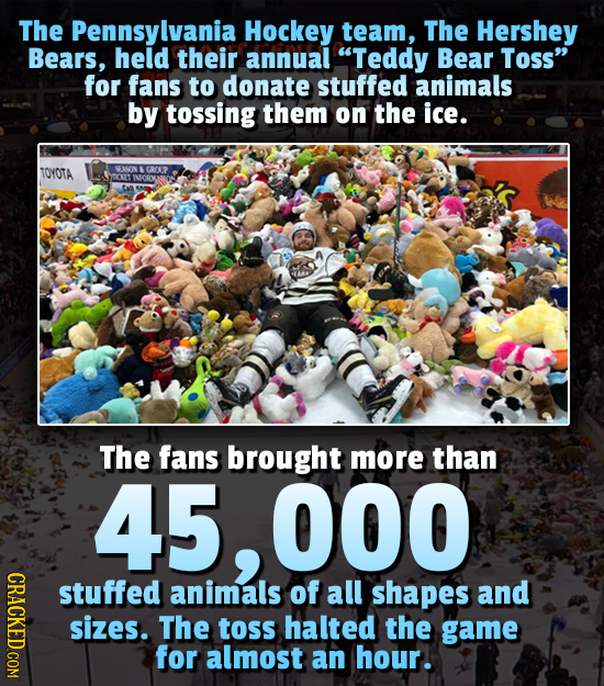 The Pennsylvania Hockey team, The Hershey Bears, held their annual Teddy Bear Toss for fans to donate stuffed animals by tossing them on the ice. TO