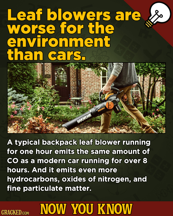Now You Know: 13 Facts That'll Exert The Old Cerebellum   - Leaf blowers are worse for the environment than cars