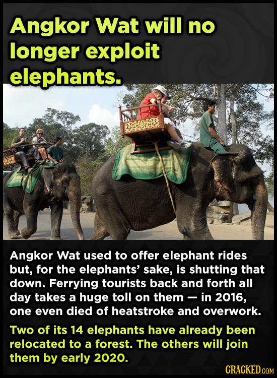 Angkor Wat will no longer exploit elephants. Angkor Wat used to offer elephant rides but, for the elephants' sake, is shutting that down. Ferrying tou