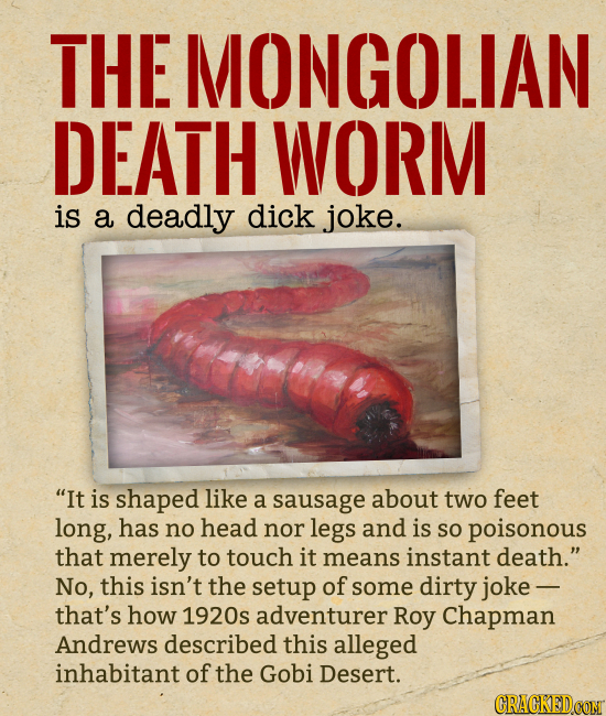 THE MONGOLIAN DEATH WORM is a deadly dick joke. It is shaped like a sausage about two feet long, has no head nor legs and is So poisonous that merely