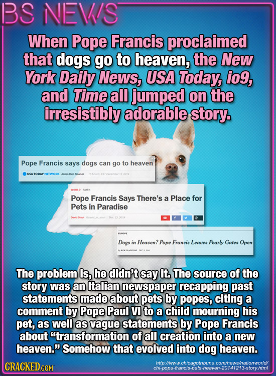 BS NEV/S When Pope Francis proclaimed that dogs go to heaven, the New York Daily News, USA Today, io9, and Time all jumped on the irresistibly adorabl