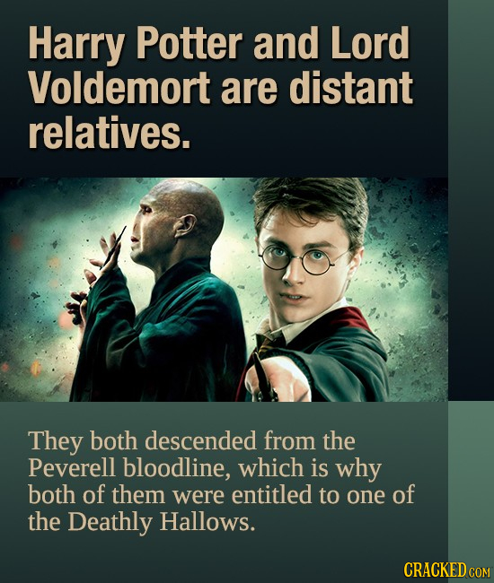 Harry Potter and Lord Voldemort are distant relatives. They both descended from the Peverell bloodline, which is why both of them were entitled to one