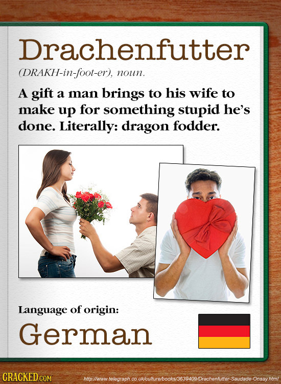 Drachenfutter (DRAKH-in-foot-er), noun. A gift a man brings to his wife to make up for something stupid he's done. Literally: dragon fodder. Language