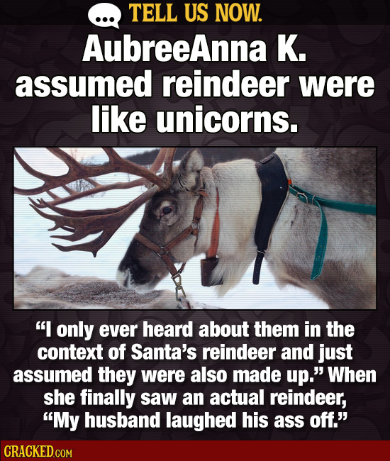 TELL US NOW. AubreeAnna K. assumed reindeer were like unicorns. I only ever heard about them in the context of Santa's reindeer and just assumed they