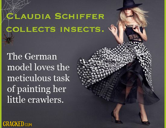 CLAUDIA SCHIFFER COLLECTS INSECTS. The German model loves the meticulous task of painting her little crawlers. CRACKED COM