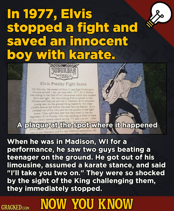 13 Illuminating And Also Entertaining Now-You-Know Facts   - In 1977, Elvis stopped a fight and saved an innocent boy with karate.