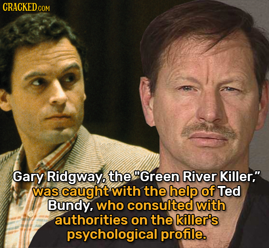 CRACKEDc COM Gary Ridgway. the Green River Killer, was caught with the help of Ted Bundy, who consulted with authorities on the killer's psychologic