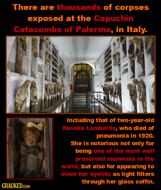 There are thousands of corpses exposed at the Capuchin Catacombs of Palermo, in Italy. Including that of two-year-old Rosalia Lombardo, who died of pn