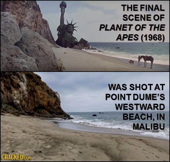 THE FINAL SCENE OF PLANET OF THE APES (1968) WAS SHOTAT POINT DUME'S WESTWARD BEACH, IN MALIBU