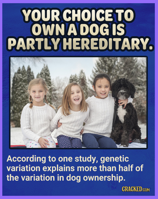 YOUR CHOICE TO OWN A DOG IS PARTLY HEREDITARY. According to one study, genetic variation explains more than half of the variation in dog ownership. CR
