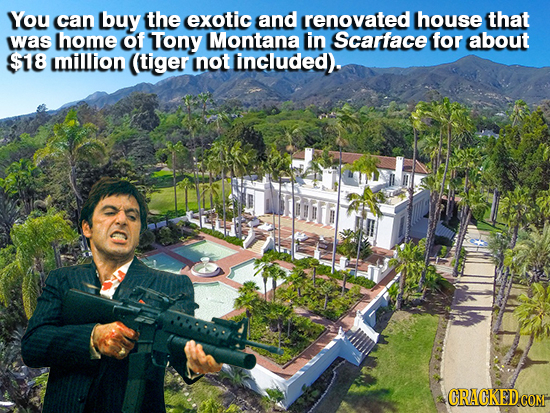 You can buy the exotic and renovated house that was thome of TTony Montana in Scarface for albout $18 mlllion tiger INOT lincluded).