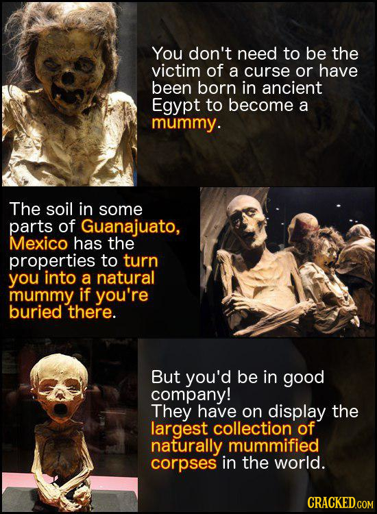 You don't need to be the victim of a curse or have been born in ancient Egypt to become a mummy. The soil in some parts of Guanajuato, Mexico has the