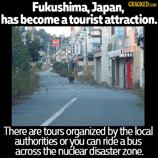 Fukushima, Japan, has become a tourist attraction. There are tours organized by the local authorities or you can ride a bus across the nuclear disaste