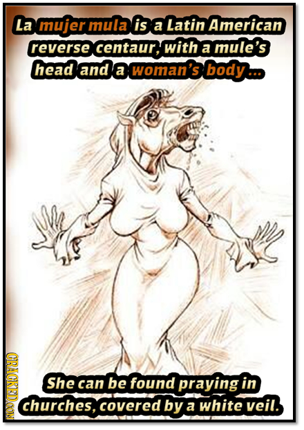 La mujer mula is a Latin American reverse centaur, with mule's a head and a woman's body. (CRAOT She can be found praying in churches, covered by a wh