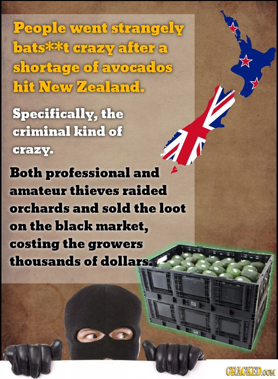 People went strangely batskxkt crazy after a shortage of avocados hit New Zealand. Specifically, the criminal kind of crazy. Both professional and ama