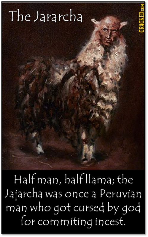 The Jararcha Half man man, halfllama; the Jajarcha was once a Peruvian who man got cursed by god for commiting incest