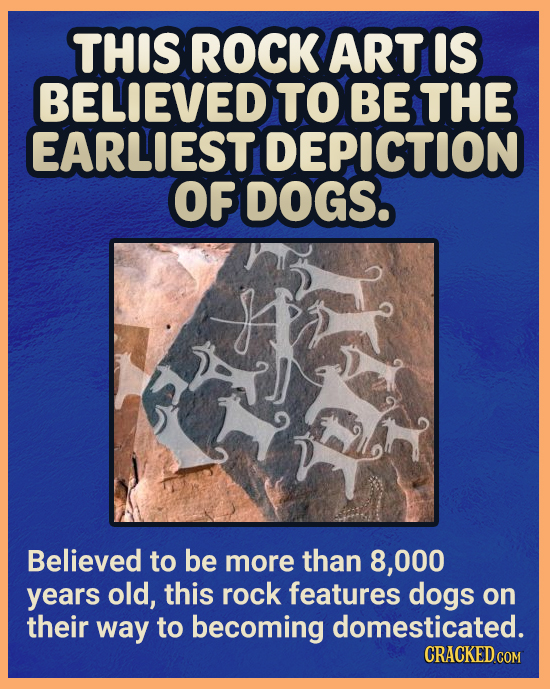 THIS ROCK ART IS BELIEVED TO BE THE EARLIEST DEPICTION OF DOGS. Believed to be more than 8.000 years old, this rock features dogs on their way to beco