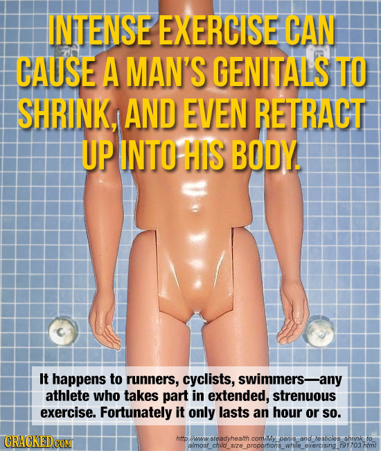 INTENSE EXERCISE CAN CAUSE A MAN'S GENITALS TO SHRINK, AND EVEN RETRACT UP INTO HIS BODY. It happens to runners, cyclists, swimmers- any athlete who t