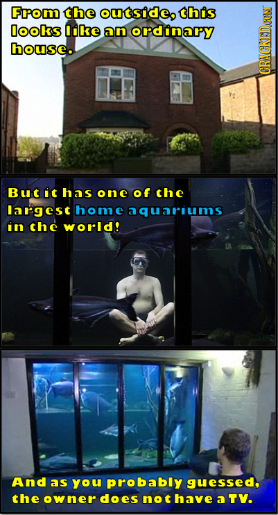 Fom the ouSideo this Dooks like ann ordinary house. CRAU But it has one of the Iargest home aquariums in the world! And as you probably guessed, the o