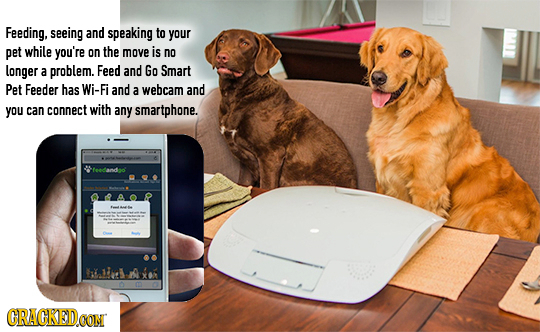 Feeding, seeing and speaking to your pet while you're on the move is no longer a problem. Feed and Go Smart Pet Feeder has Wi-Fi and a webcam and you